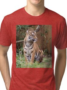 Fearful Symmetry Tri-blend T-Shirt