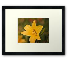 Be careful when you give flowers to an Ant Framed Print