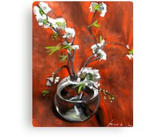 green gage blossoms  Canvas Print
