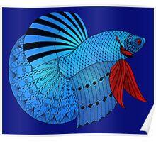 Betta Fish Poster