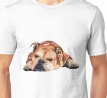 Sleeping English Bulldog Graphic Unisex T-Shirt