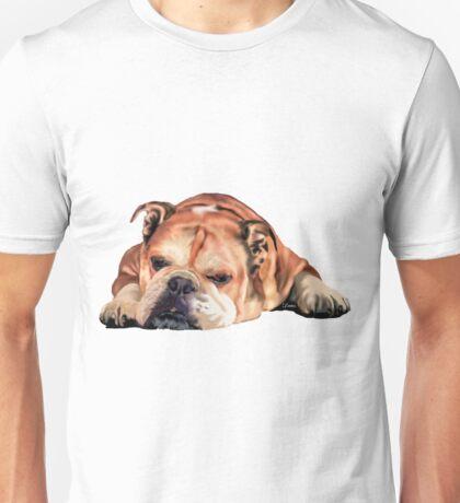 Sleeping English Bulldog Graphic Unisex T-Shirt