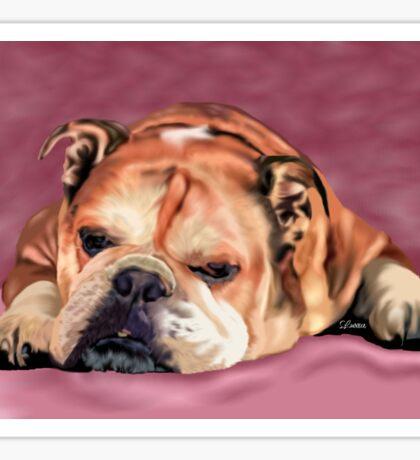 Sleeping English Bulldog with Background Sticker