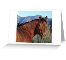 Beautiful Bay Mustang Stallion Art Print Greeting Card