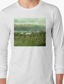 Spoonbills in my backyard Long Sleeve T-Shirt
