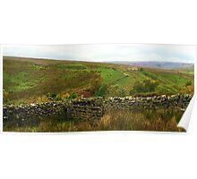 Yorkshire Dales, UK Poster