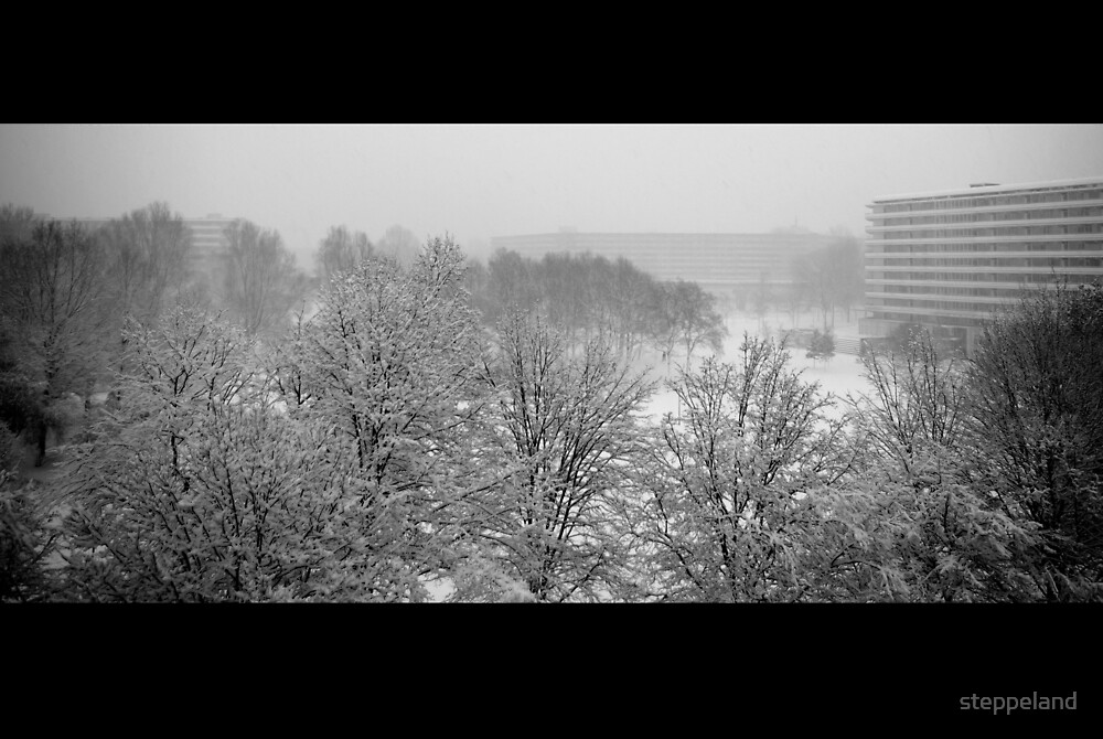 Snow in the Bijlmer by steppeland