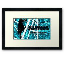 THE RUSSIAN WOODPECKER - CHERNOBYL Framed Print