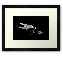 0051 - Brush and Ink - Disintegration Framed Print