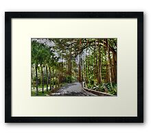 The Mauritius Collection - The Banyan Tree - Lux Grand Gaube Framed Print
