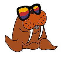 Hilarious Cool Walrus in Sunglasses  Photographic Print