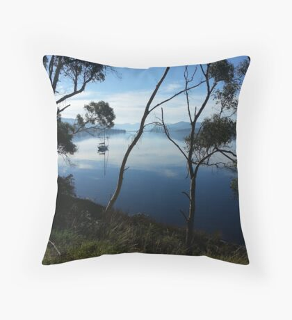 Franklin Tranquility Throw Pillow