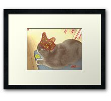 Cat Hat Framed Print