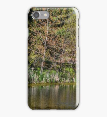 On Golden Pond iPhone Case/Skin