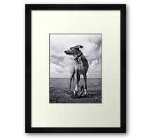 Possession is nine-tenths of the law Framed Print