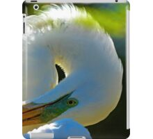Great White Egret with Sun Behind Her iPad Case/Skin