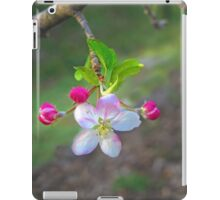 Apples in Blossom iPad Case/Skin