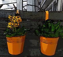 Orange Pots and Plants by HeklaHekla