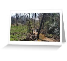 A Woodland Serenity Greeting Card