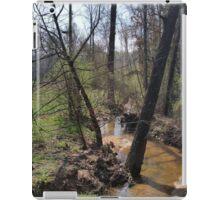 A Woodland Serenity iPad Case/Skin
