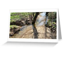 The Serene Flow Greeting Card