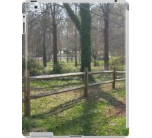 Country Calm iPad Case/Skin