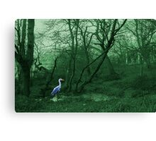Mystical Heron.  Canvas Print