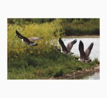Canada Geese in Fight. Kids Tee