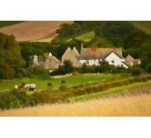 Somerset Farm Photographic Print