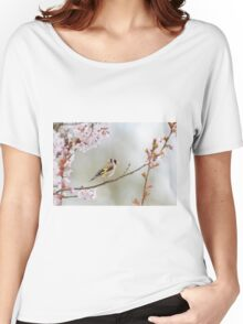 Goldfinch - Carduelis carduelis Women's Relaxed Fit T-Shirt