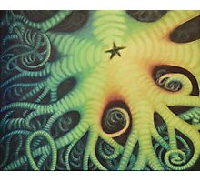 Vivid Colors Starfish Painting Photographic Print