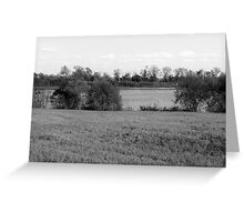 Lakeview - Black and White Greeting Card