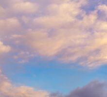 Wellington Under Dramatic Daybreak Skies Sticker