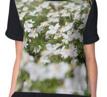 Spring Blossoms Chiffon Top
