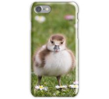 Egyptian Goose Chick iPhone Case/Skin