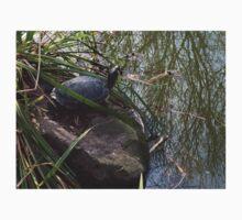 Yellow Belly-Slider Turtle Kids Tee