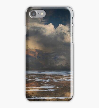 4179 iPhone Case/Skin