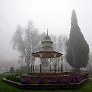 Rotunda in the misty fog. by Mary Taylor