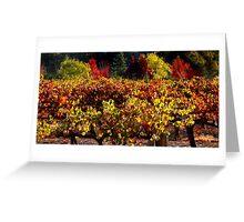 Autumn Vineyard Landscape Greeting Card