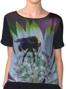 Nectar Chiffon Top