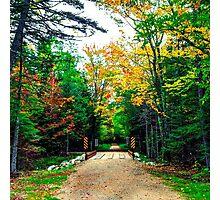 Autumn Bridge Photographic Print