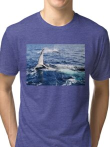 A Whale Of A Time Tri-blend T-Shirt