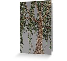 Summer Willow Tree - grey Greeting Card