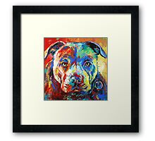 Stafforshire Bull Terrier Framed Print