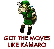 Legend of Zelda - Moves Like Kamaro  Photographic Print