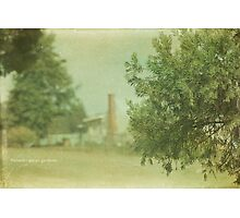 Rodwell Photographic Print