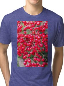 red berries in the garden Tri-blend T-Shirt