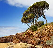 Red Rocks Point - Phillip Island by Hans Kawitzki