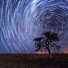 Coonamble Stars by David Haworth