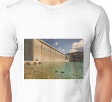Those dam ducks Unisex T-Shirt